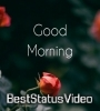 Good Morning Status Video Song Download