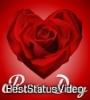 Rose Day Video Status