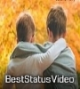 Brothers Day WhatsApp Status Videos Free Download