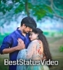 New Gujarati Status Video Free Download