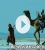 Mara Dil Ma Dhadke Gyjarat Video Status Song