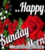 Happy Sunday Status Video For Wahtsapp Download