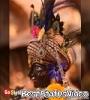Jab Koi Baat Bigad Jaye Status Video Download