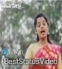Eme Pilla Annapudalla Telugu Whatsapp Status Video