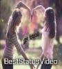 Tere Jaisa Yaar Kahan Female Version Status Video