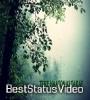 Rozana Female Version Whatsapp Status Video Download