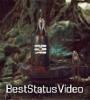 Bom Bholenath Bob Marley Whatsapp Status Video