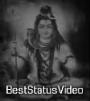 Tu Bhi Bhola Me Bhi Bhola Whatsapp Status Video