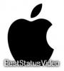 Apple Pay Success Sound Effect