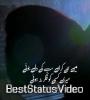 Muqaddar Ost Song Whatsapp Status Video