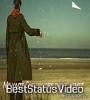 Bu Az Ti Tanha Bu Roz Shayd Paga Ti Tanha Whatsapp Status Video Download