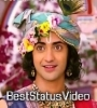 Mere Shyam Ka Jag Diwana Hai Whatsapp Status Video Download