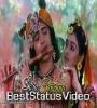 Jab Jab Bajaye Mohan Muraliya Whatsapp Status Video Download