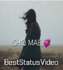 Jaa Dekhi Teri Yaariyan Momina Mustehsan Whatsapp Status Video Download