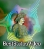 Tipu Sultan Dj Remix Whatsapp Status Video Download