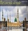 Meri Ane Wali Sab Nasle WhatsApp Status Video Download