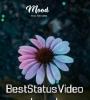 Basi Basi Tumake Basim Dj Remix Whatsapp Status Video