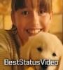 Marshmello ft. Bastille   Happier Song Whatsapp Status Video Download