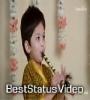 The Utsav Stories Janmashtami Collection Status Video