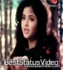 Tu Pagal Premi Awara Dil Teri Mohabbat Ka Mara Whatsapp Status Video Download