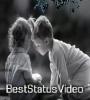 Basi Basi Tumake Basim WhatsApp Status Video Download