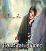 Akele Tanha Jiya Na Jaye Whatsapp Status Video Download