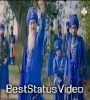 Bache Babbar Sher D Dhadi Tarsem Singh Moranwali WhatsApp Status Video Download