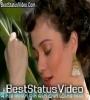 Amar Jibone Tumi Ele Whatsapp Status Video Download