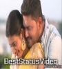Husband Wife Video Status For Whatsapp Download