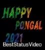 Happy Pongal Beautiful Wishes Greetings WhatsApp Status Video