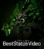 Good Night Full Screen WhatsApp Status Video Download