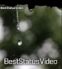 Mayanadhi Theme Full Screen Rain WhatsApp Status Video Download