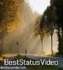 Beautiful Short Nature Status Video Download