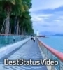 Teri Meri Kahani Full Screen Nature Status Video Download