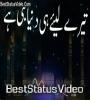 Shah E Madina Urdu Naat Status Video Download