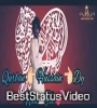 Syedaan Di Nokri Zeeshan Rokhri Whatsapp Status Video Download