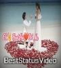 8 Feb Propose Day Whatsapp Status Video Download