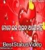 Propose Day Status Video Download Odia