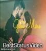 Mere Wali Sardarni New Cute Love Whatsapp Status Video Song Free Download