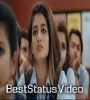 Happy Flirting Day Special WhatsApp Status Video Download