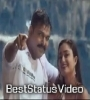 Babuni Tere Rang Me Whatsapp Status Video Download