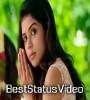 Love Feeling Whatspap Status Video Download