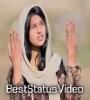 Ho Gaya Hai Jinda Masih Whatsapp Status Video Download