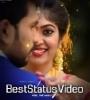 Kutty Mohabbat Ne Angrai Li Whatsapp Status Video Download