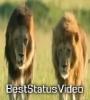 Abhi To Jindgi Ka Motivation Whatsapp Status Video Download
