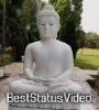 Namo Buddhay Buddha Jayanti Status Video Mirchi