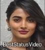 Pooja Hegde Love Whatsapp Status Video Download