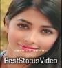 Pooja Hegde Cute Whatsapp Status Download