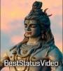 Bholenath 4k Full Screen Status Video Download