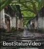 Best Rain Shot Video Free Download